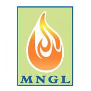 MAHARASHTRA NATURAL GAS LTD